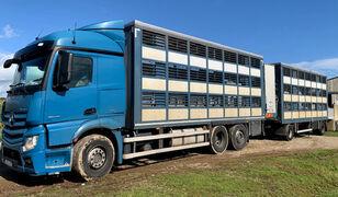 camion bétaillère MERCEDES-BENZ Actros 2548 for pigs transport + remorque bétaillère