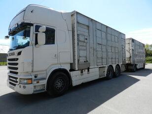 camion bétaillère SCANIA R560 + remorque bétaillère